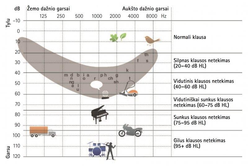 klausos diagrama
