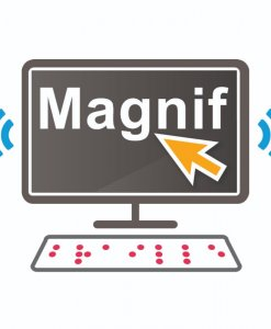 Dolphin magnifier and screen reader