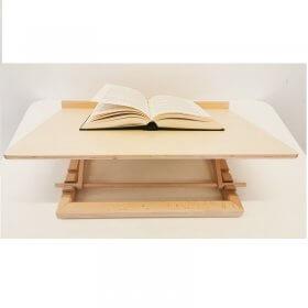 Skaitymo/rašymo stovas